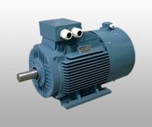 Y2系列电机